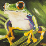 Tree Frog Painting Terry Lewey Fine Art Prints And