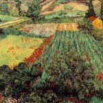 Vincent Van Gogh Field Poppies Painting Best Paintings For Sale