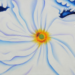White Flower Keeffe Oil Painting Reproduction For Sale