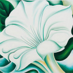 White Trumpet Flower Keeffe Oil Painting Reproduction For Sale