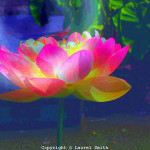 Wild Lotus Abstract Digital Flower Mystical Artist Laurel
