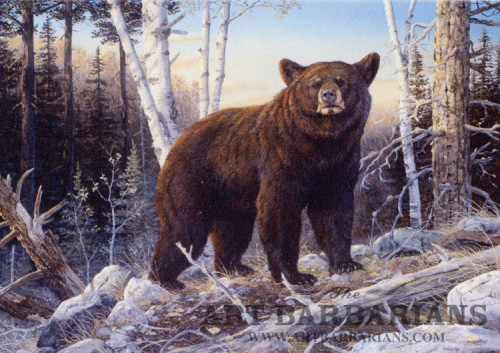 Wildlife Art Prints Plus Original Paintings Wide Selection From