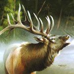 Wildlife Oil Paintings Original Painting