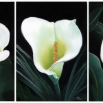 Work Commanded High Prices Six Her Calla Lily Paintings