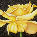 Yellow Rose Paintings Realism Acrylic Canvas Floral