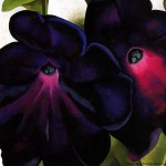 Art Painting Index Georgia Keeffe