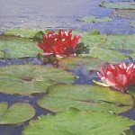 Famous French Impressionist Claude Monet Used Water Lilies