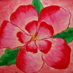 Georgia Keefe Flower Paintings