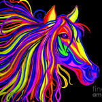 Horse Head Drawing Colorful Rainbow Fine Art Print