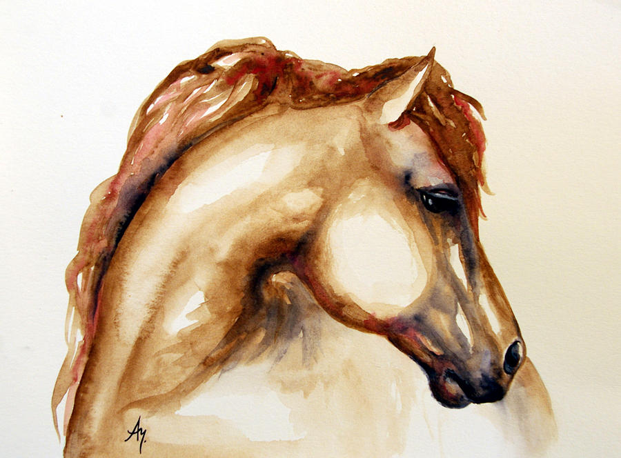 Horse Head Paintings Watercolor Canvas