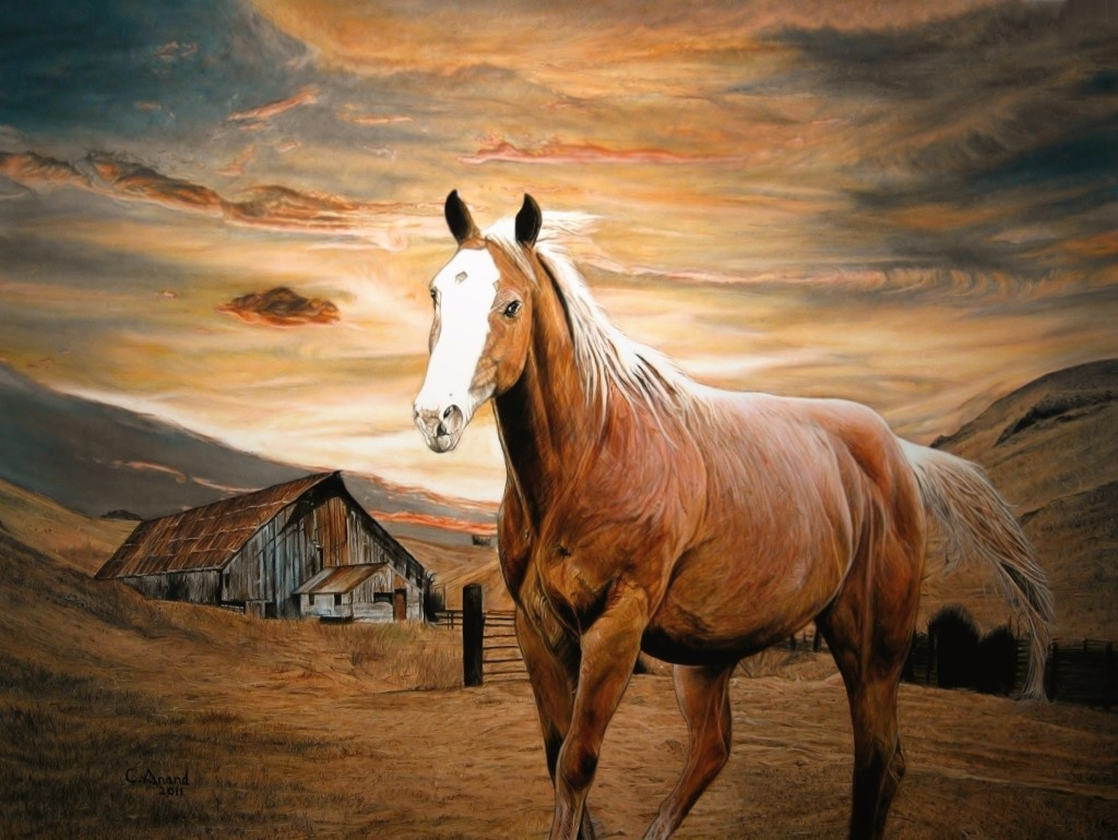 Runaway Horse Oil Canvas Inches