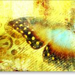 Abstract Canvas Art Print Open Winged Butterfly Finished