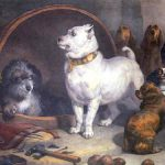 Alexander And The Diogenes Landseer