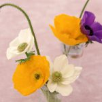 Awesome Poppy Flower Art Pictures Gallery