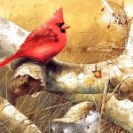 Backyard Birds Beautiful Paintings Small Bird Illustration
