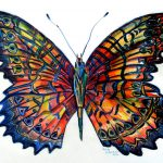 Butterfly Painting Fine Art Print