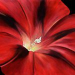 Canvas Art Print Floral Red Flower Painting Black