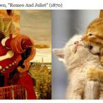 Cats Poses Similar Identical