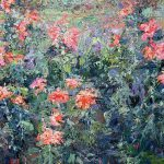 Dahlias Monet Garden Paintings Marlena Lyn Chumo
