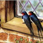 Famous Birds Oilpaintingshere Animaloilpainting Bird