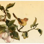 Famous Chinese Bird Paintings Painting Gongbi