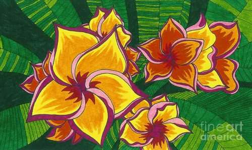 Hawaiian Flowers Drawing Orange Fine Art Print