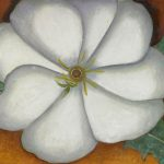 Home Shop Artists Keeffe White Flower Red Earth
