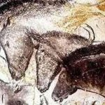 Horse Dna Confirms Cave Paintings