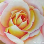 Just Look And Beautiful Flowers Oil Paintings Our Hand Painted