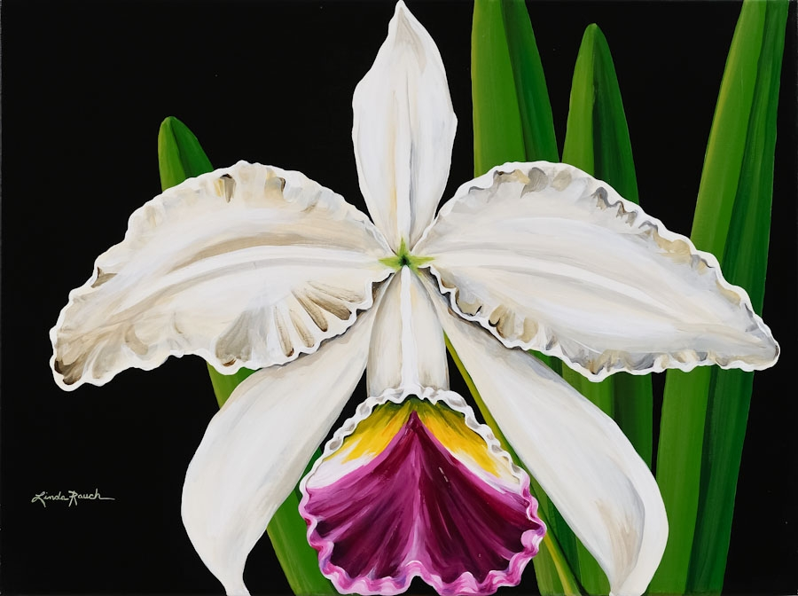 Painting White Orchid Linda Rauch Graph Bryan
