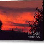 Sunset Stretched Canvas Print Art Chad Thompson