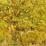 Vincent Van Gogh Field Yellow Flowers Painting