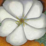 White Flower Red Earth Oil Painting Georgia Keeffe