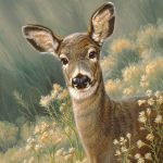 Autumn Fawn Blacktail Painting Paul