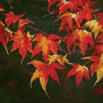 Autumn Leaves Oil Canvas