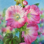 Barbara Fox Daily S Pink Hollyhocks Watercolor Flower