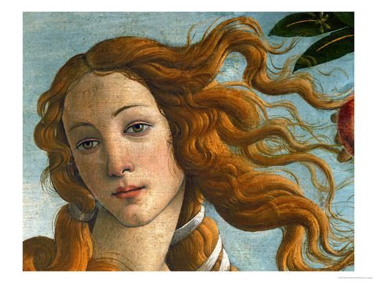 Birth Venus Head Giclee Print Sandro Botticelli