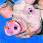 Cute Pink Pig Colored Pencil Painting Print Farm Animals
