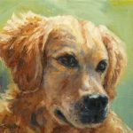 Daily Painting Projects Golden Summer Oil Dog Art Pet Portraits