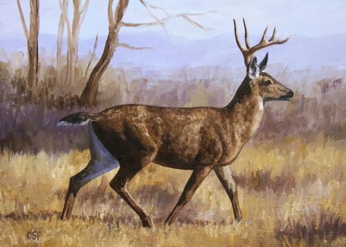 Deer Painting Trotting Buck Crista