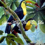 Famous Bird Paintings Reviews Shopping