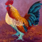 Fancy Pants Rooster Marion