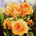 Flower Rose Paintings Watercolor Oil Fine Art Susan Harrison