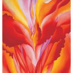 Georgia Keeffe Boxed Cards Abstract Flowers Ghost