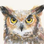 Great Horned Owl Watercolor Painting Olga