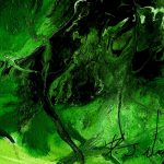 Green Abstract Series
