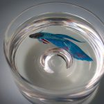 Hyper Realistic Paintings Made Acrylics Layers Resin Keng