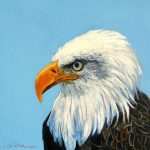 Items Similar Bald Eagle Paintings Original Art Acrylic Americana