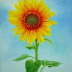 Jimmie Art Tall Sunflower Oil