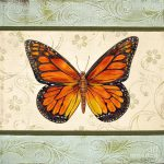 Lovely Butterfly Painting Jean